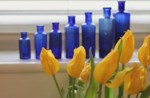 bredesen protocol cost page tulips and bottles cogmission